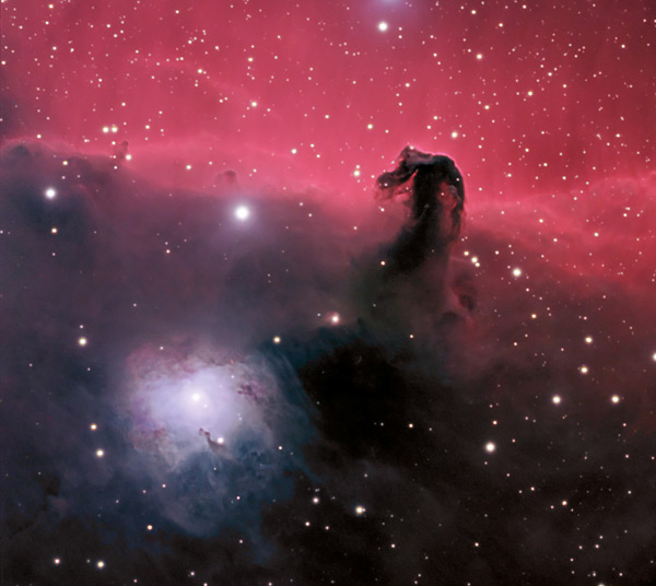 The Horsehead - by Greg Bradley
