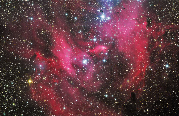 Running Chicken Nebula (IC2948) - by Steve Crouch