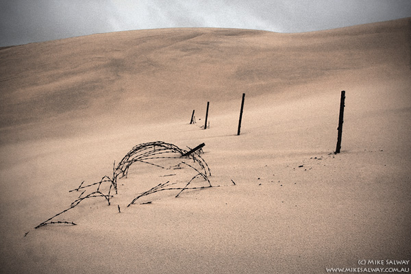 Barbed Wire Entanglements on Stockton Beach Sand Dunes