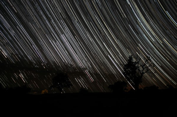 Star Trails due East