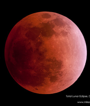 Blood Red Eclipsed Moon