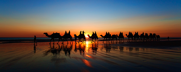 Camel Ride at Cable Beach