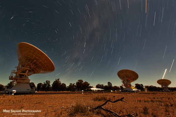 Radio Telescope Star Trails